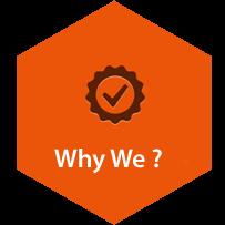 best institute for web designing